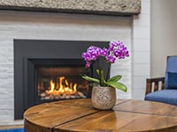 Fireplace and Orchid Interior Photo at Rockport Inn & Suites